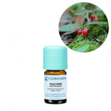 Wintergreen (gaultherie) BIO
