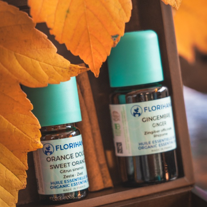 Tips to boost your autumn routine: discover our natural essentials for the season.